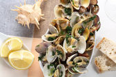 Steamed clams seasoned with olive oil, garlic and parsley — Stock Photo