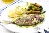 Seabream fish — Stock Photo