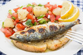 Portuguese style grilled sardines with traditional salad — Stock Photo