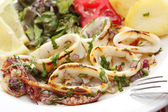 Grilled squids with salad - portuguese style — Stock Photo