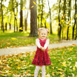 Little girl in autumn park (soft focus, focus on eyes of baby) — Stok fotoğraf #19922043