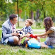 Little boy with family in the park — Stock Photo #19922881
