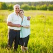 Royalty-Free Stock Photo: A lovely portrait of a happy senior couple outdoors.