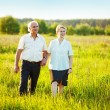 A lovely portrait of a happy senior couple outdoors. — Stock Photo