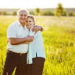 A lovely portrait of a happy senior couple outdoors. — Foto de Stock