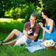 Young couple with dog on picnic in park — ストック写真