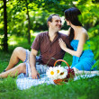 Young couple with dog on picnic in park — Stock Photo #19928069