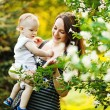 Mother with her child looking at blooms on tree  — Stock Photo