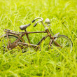 Toy bicycle on a grass - Stock Photo