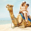 Fun camel ride — Stock fotografie