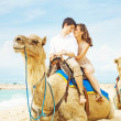 Fun camel ride — Stock Photo
