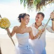 Wedding under palm tree — Stock Photo