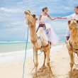 Stock Photo: Fun camel ride