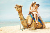 Fun camel ride — Stock Photo