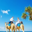 Camel ride on wedding day — Stock Photo