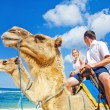 Camel ride on wedding day — Stock Photo #30761889