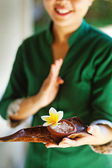 Masseuse holding spa ingredients (soft focus on the flower and salt) — Stock Photo