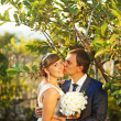 Wedding in the park or forest — Stock Photo