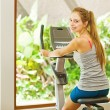 Woman in gym — Stock Photo #33573233