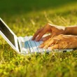 Closeup of laptop on grass — Stok Fotoğraf #33576641
