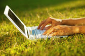 Closeup of laptop on a grass — Stok fotoğraf