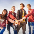 Team success concept: group of people holding hands on the top of the mountain — Foto de Stock