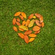 Heart from leaves — Stock Photo #50783609