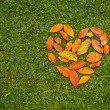 Heart from leaves — Stock Photo #50783613