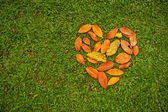 Heart from leaves — Stock Photo