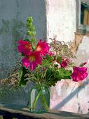 Flores de verano hermosa primavera en un jarrón de cristal en una sala de estar — Foto de Stock