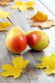 Pears. Fruit. — Stock Photo