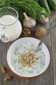 Tarator, sopa búlgara leite azedo — Foto Stock