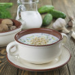 Tarator, bulgarian sour milk soup — ストック写真