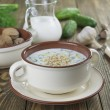 Stock Photo: Tarator, bulgarisour milk soup