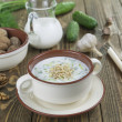 Tarator, bulgarian sour milk soup — Stockfoto