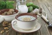 Tarator, bulgarische sauermilch suppe — Stockfoto