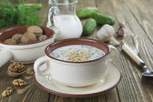 Tarator, sopa de leche agria búlgara — Foto de Stock