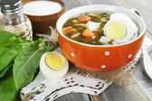 Sorrel soup with eggs — 图库照片