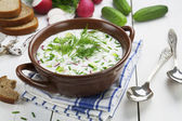 Cold summer soup with yogurt and vegetables — Stock Photo