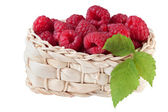 Raspberry in basket, isolated on white background — Stock Photo