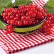 Red currant in green bowl — Stock Photo