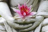 Buddha hands holding flower, close up — Stock Photo