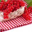 Red currant with leaves in basket — Stock Photo #17664691