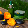 Skincare concept, bottles of cream, serum with marigold flowers — Stock Photo