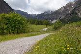 Alpine landscape in the springtime — Stock Photo