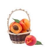 Apricot in wicker basket — Stock Photo