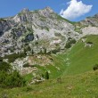 Stock Photo: Summer landscape in Alps, Austria