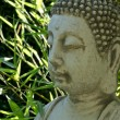 Buddha face with bamboo leaf in background — Stock Photo