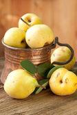 Ripe Pears in Copper Jug, still life — Stock Photo