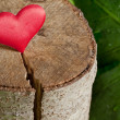 Stock Photo: Heart on a Tree cut